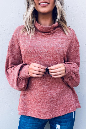 Cranberry Turtleneck Top