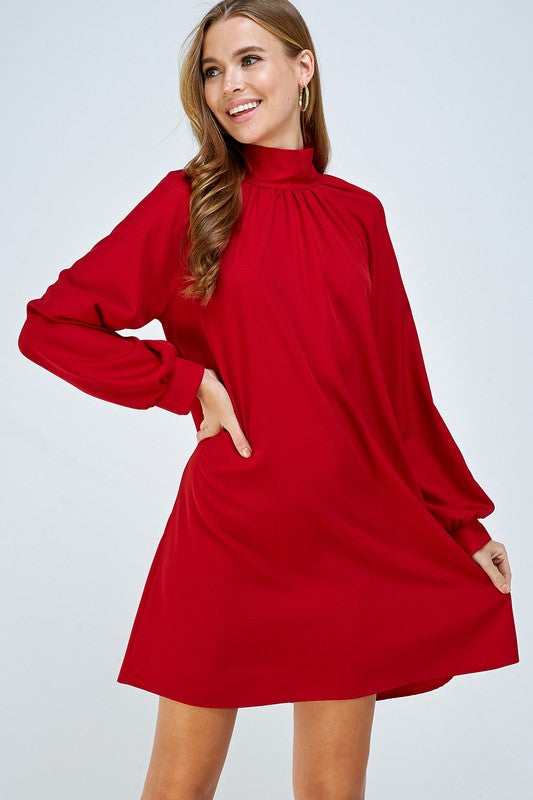 Holiday Long Sleeve Dress