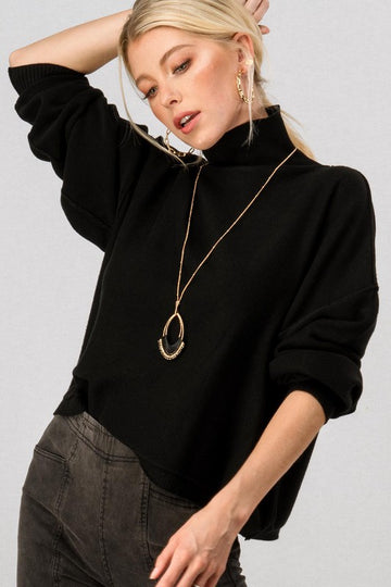 Soft Knit Turtleneck Sweater