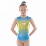 Tappers and Pointers SL Ombre Gymnastics Leotard