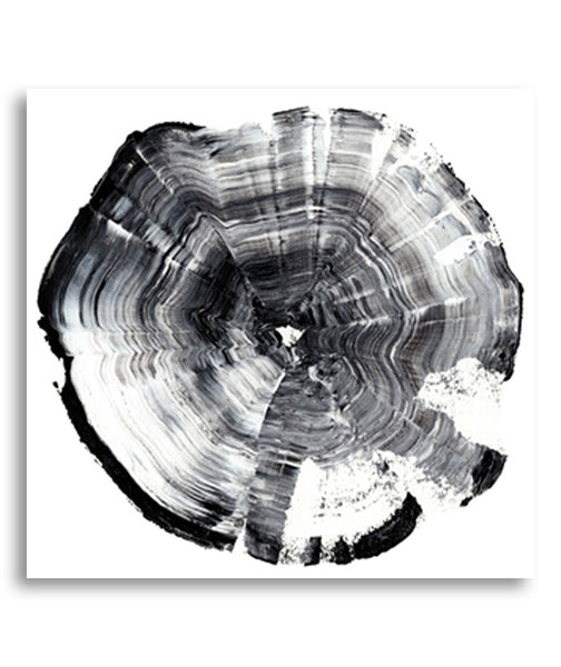 Tree Ring Abstract I