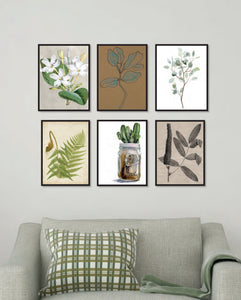 Gallery Wall of Botanical