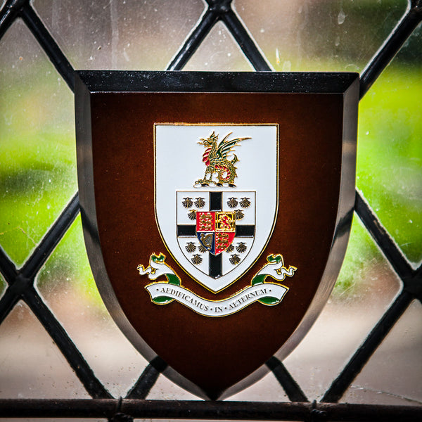 Queen's College Crest Shield