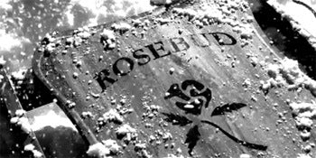 Boscutti - Orson Welles - one of the Rosebud sleds from Citizen Kane