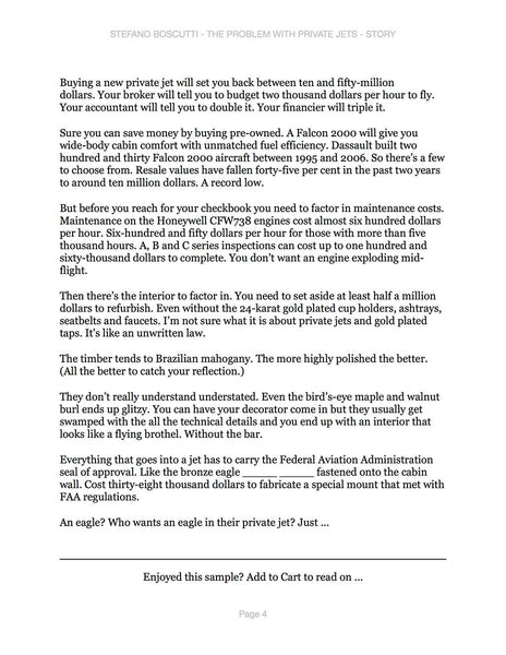 Stefano Boscutti - The Problem With Private Jets Story - Sample Page 4