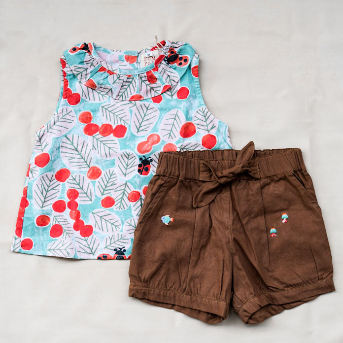 Ladybug Top and Brown Pants Set