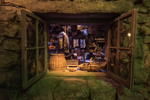 Hagrid's Hut Through A Window