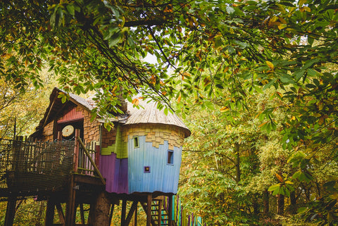 BeWILDerwood, the curious treehouse adventure park
