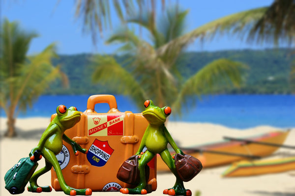 frogs travelling with luggage