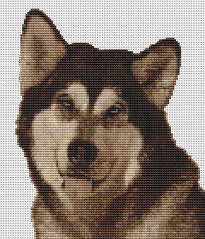 Alaskan Malamute Dog Counted Cross Stitch Kit