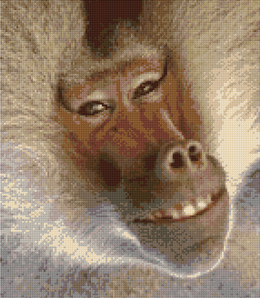 Baboon Counted Cross Stitch Kit