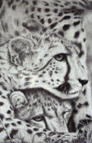 Cheetahs Counted Cross Stitch Kit