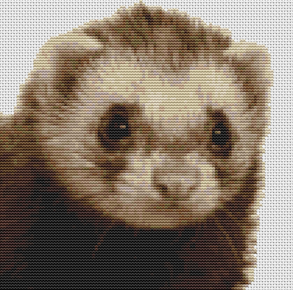Ferret Counted Cross Stitch Kit