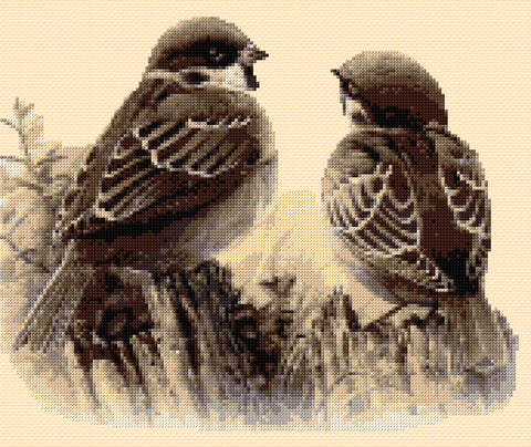 House Sparrows  Counted Cross Stitch Kit