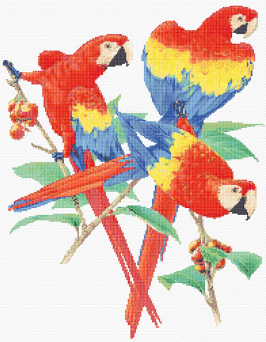 Scarlet Macaws Counted Cross Stitch Kit