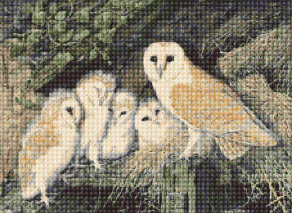 Barn Owl Family Counted Cross Stitch Kit