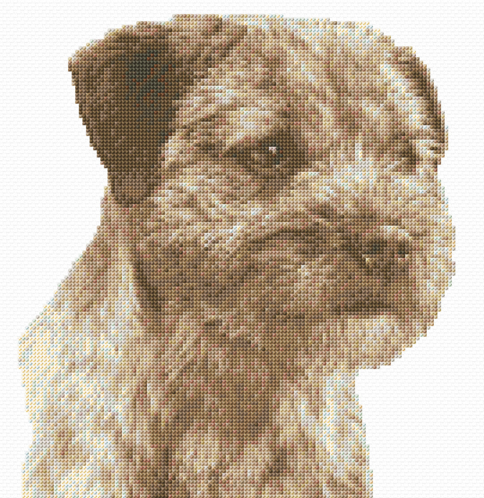 Border Terrier Counted Cross Stitch Kit