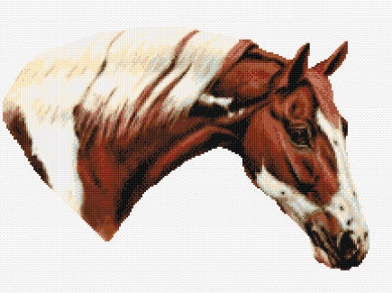 Horse  Counted Cross Stitch Kit