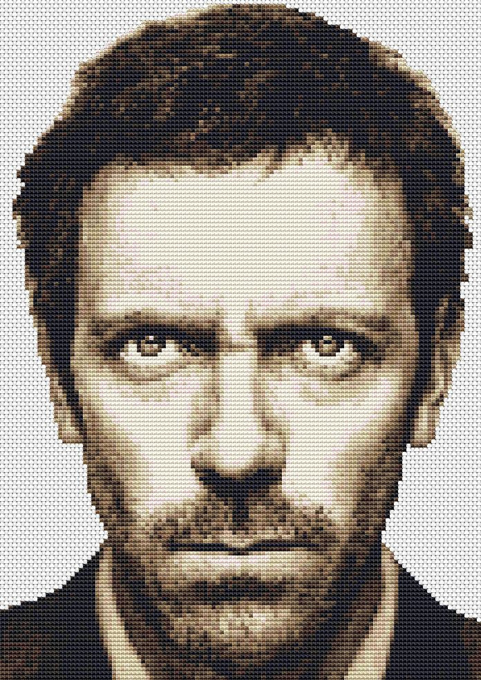 House-Hugh Laurie  Counted Cross Stitch Kit