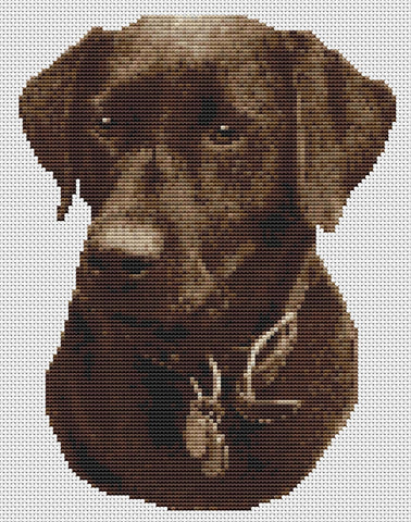 Chocolate/Brown Labrador Dog Counted Cross Stitch Kit