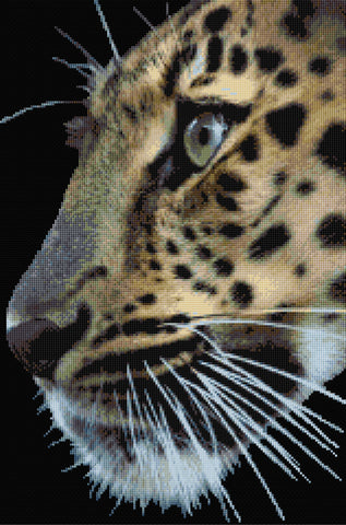 Leopard Counted Cross Stitch Kit
