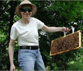 Lesli holding a frame of bees.