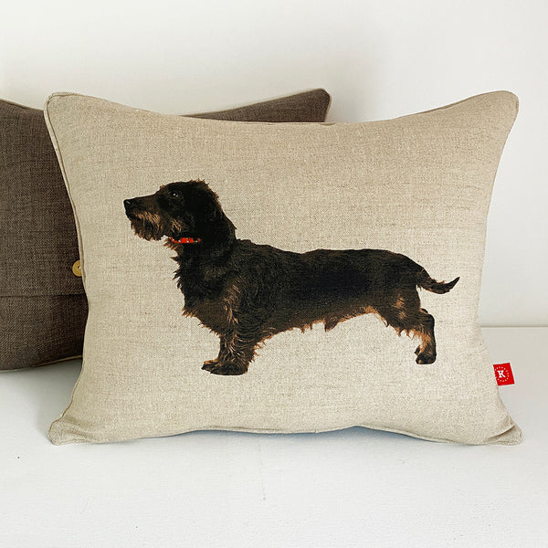 wire hair dachshund cushion