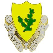 "PINS- ARMY, 012TH CAV.RGT. (1"")"