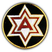 "PINS- ARMY, 006TH (1"")"