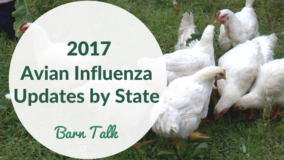 2017 Avian Influenza Cases by State