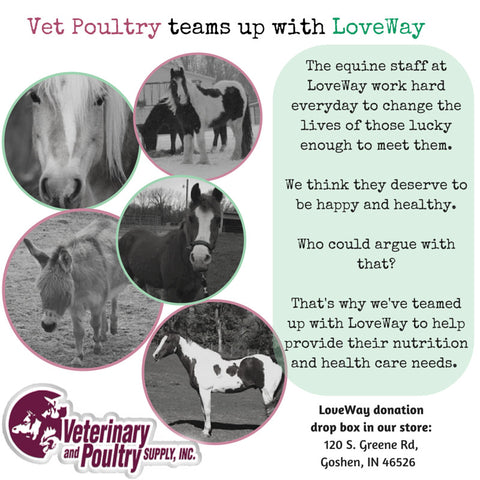 LoveWay and Vet Poultry partnership