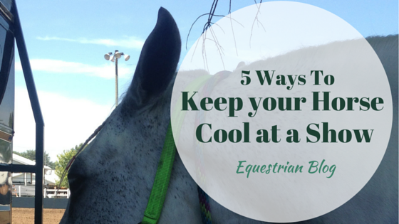 5 Ways to Keep a Horse Cool at a Horse Show