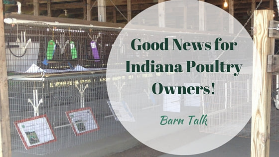 Good News For Indiana Poultry Owners Ban Lifted