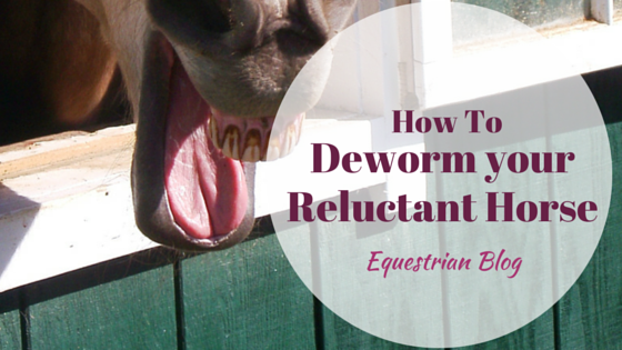 How To Tube Deworm A Reluctant Horse