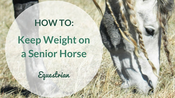 How to Keep Weight on Old Horses