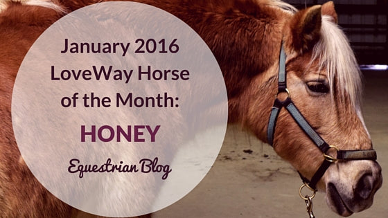 January 2015 LoveWay Horse Honey