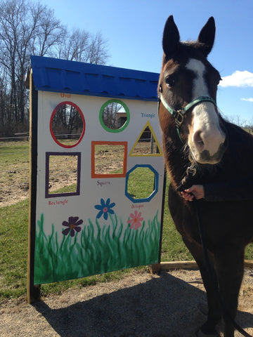 LoveWay Horse of the Month Grace