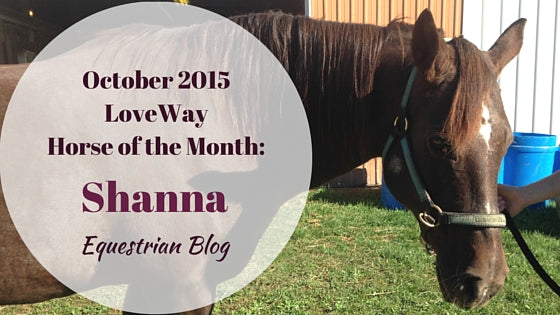 LoveWay October Horse of the Month Shanna