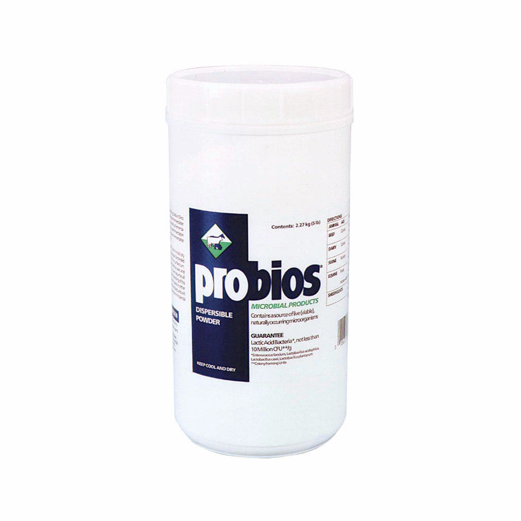 Probios Multi Species Powder for Gut Health