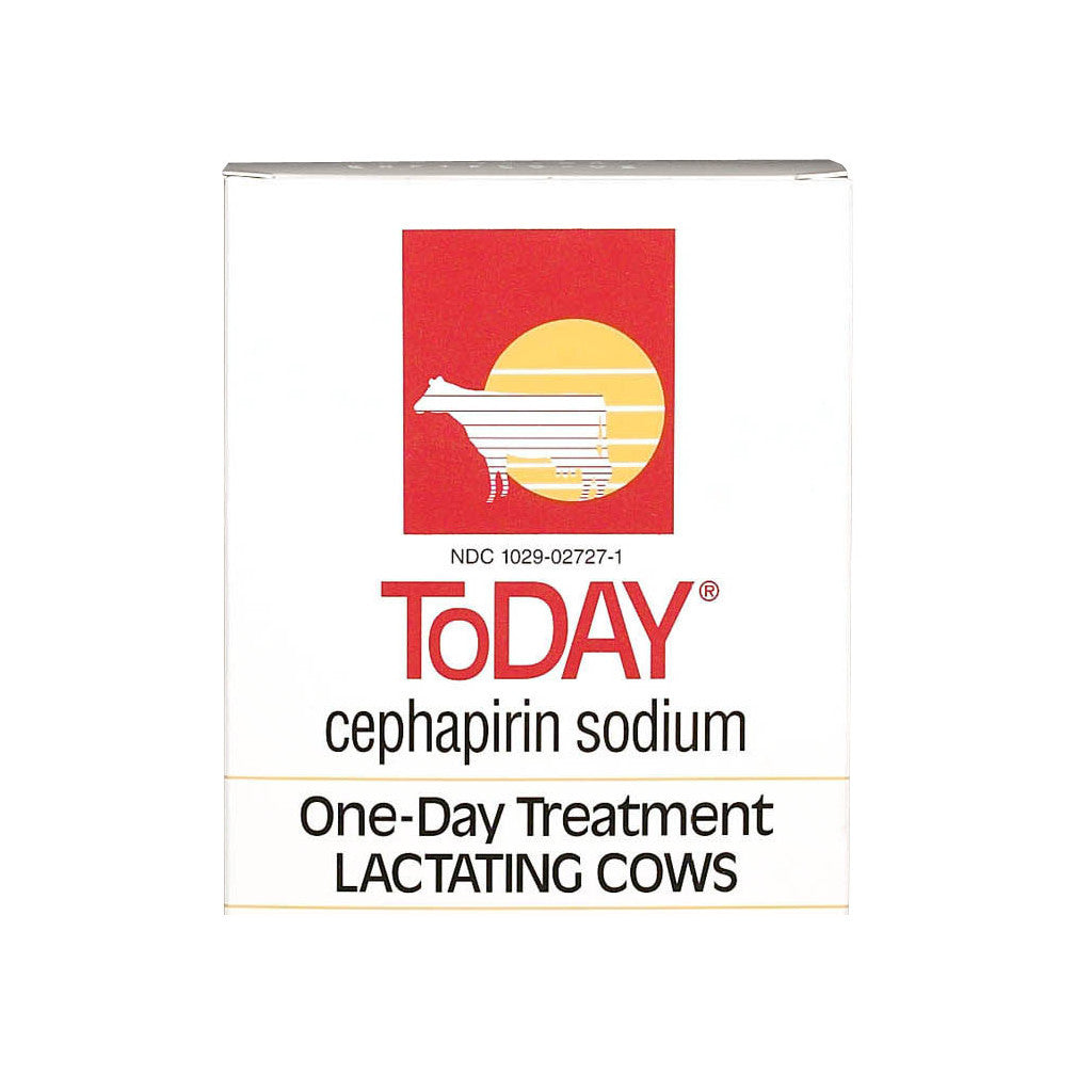 ToDAY Cephapirim Sodium Mastitis Treatment