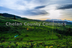 Rolling Green Hills , JPG Image Download - Brian Mitchell, Chelan County Commons