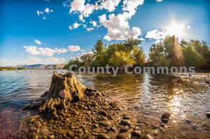 Columbia River Treestump , JPG Image Download - Brian Mitchell, Chelan County Commons