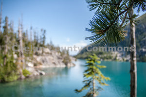 Enchantments - Colchuck Tree , JPG Image Download - Josh Cadd, Chelan County Commons