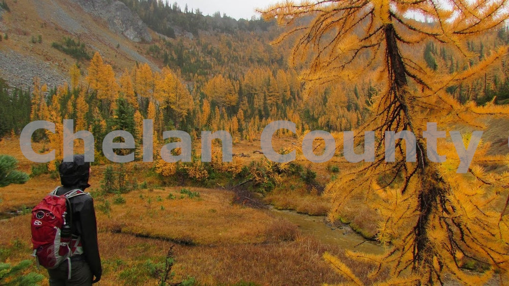 Fall Larch Hike at Carne Mountain