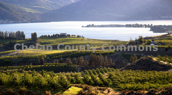 Lake Chelan Wine & Orchard Country , JPG Image Download - Richard Uhlhorn, Chelan County Commons