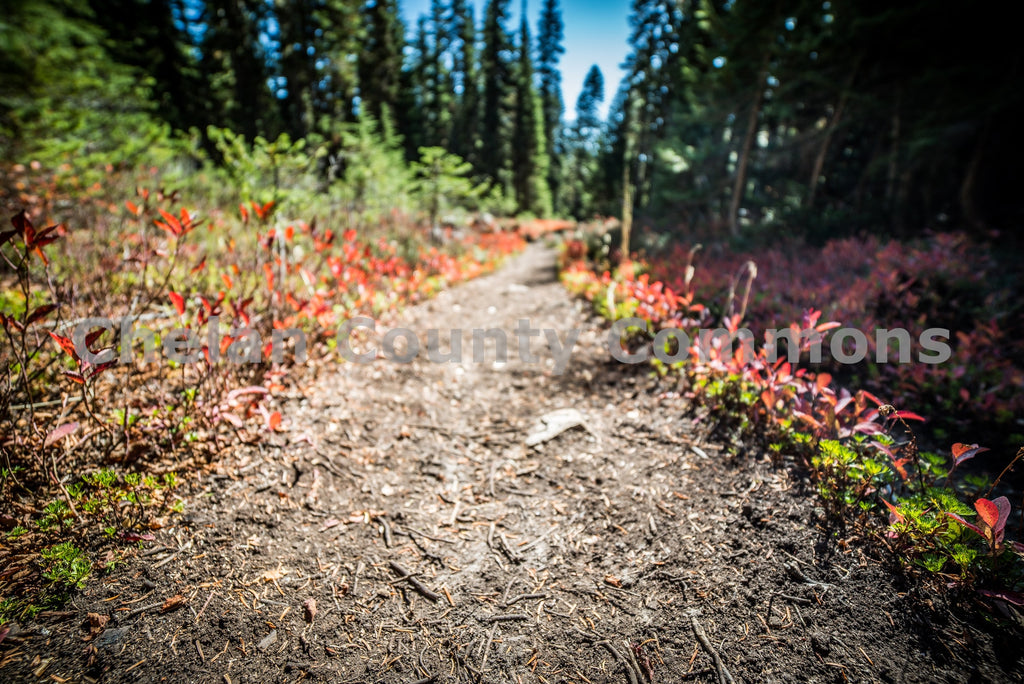 Lake Minotaur Hiking Trail , JPG Image Download - Brian Mitchell, Chelan County Commons