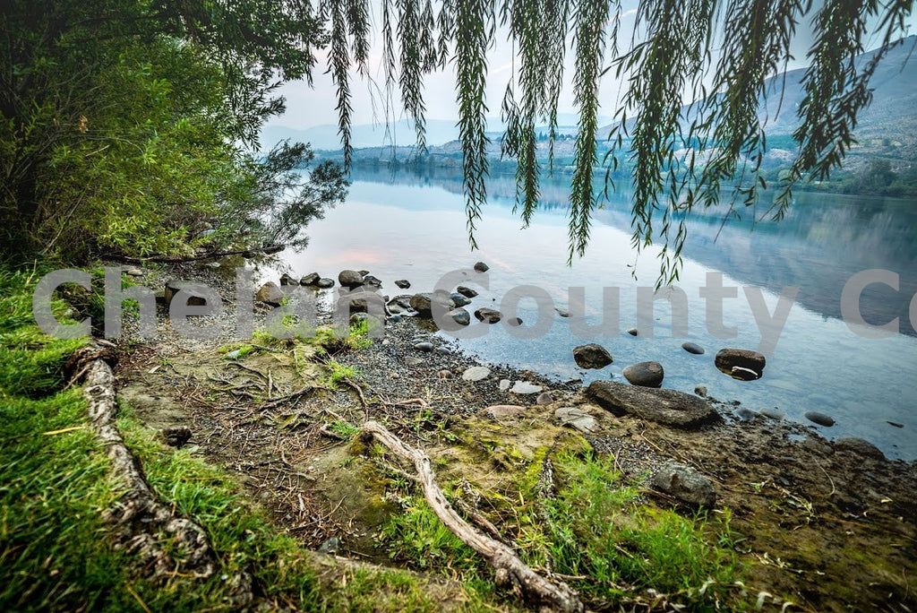 Columbia River Mossy Shoreline , JPG Image Download - Brian Mitchell, Chelan County Commons