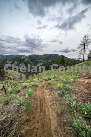 Twin Peaks Mountain Biking Trail , JPG Image Download - Brian Mitchell, Chelan County Commons