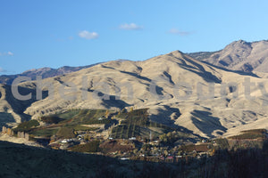 Wenatchee Orchard Hillsides , JPG Image Download - Megan Lewis, Chelan County Commons