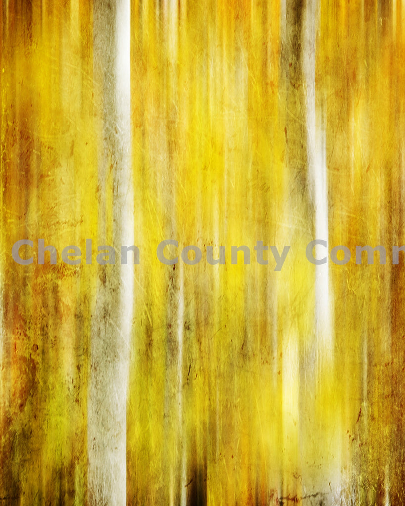 Aspen Fall Colored Background , JPG Image Download - Heidi Swoboda, Chelan County Commons